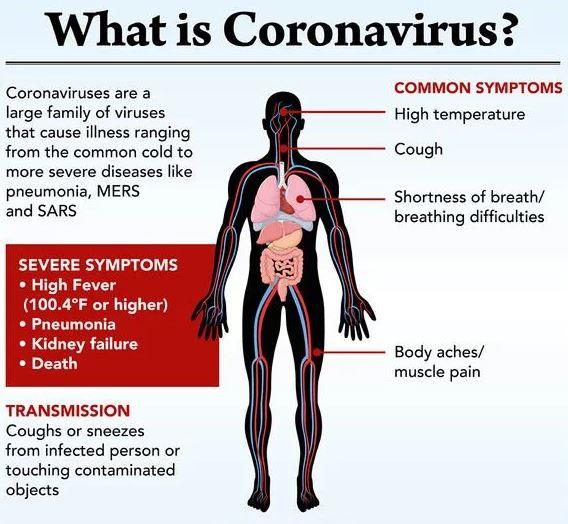 what is coronavirus covid-19